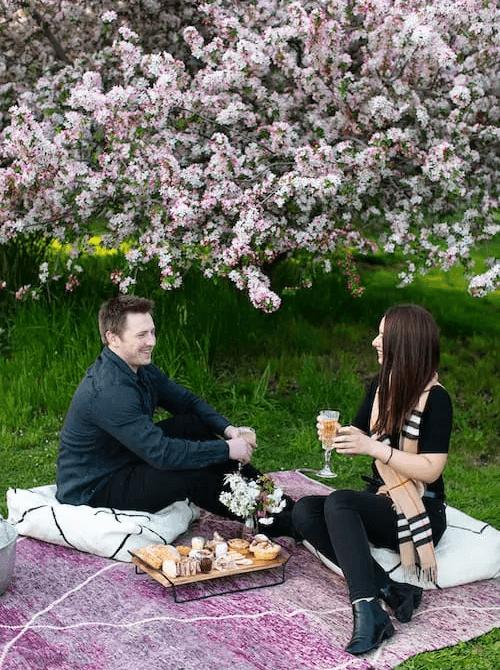 Luxury picnic romantic setting