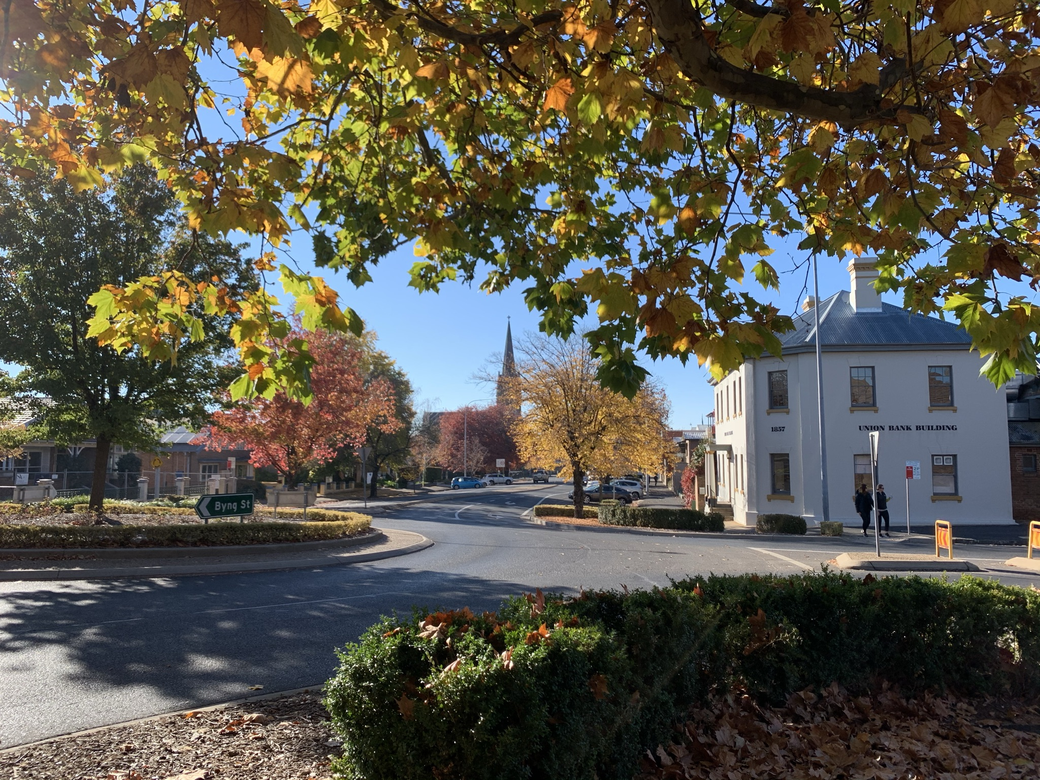 Autumn leaves in street of Orange