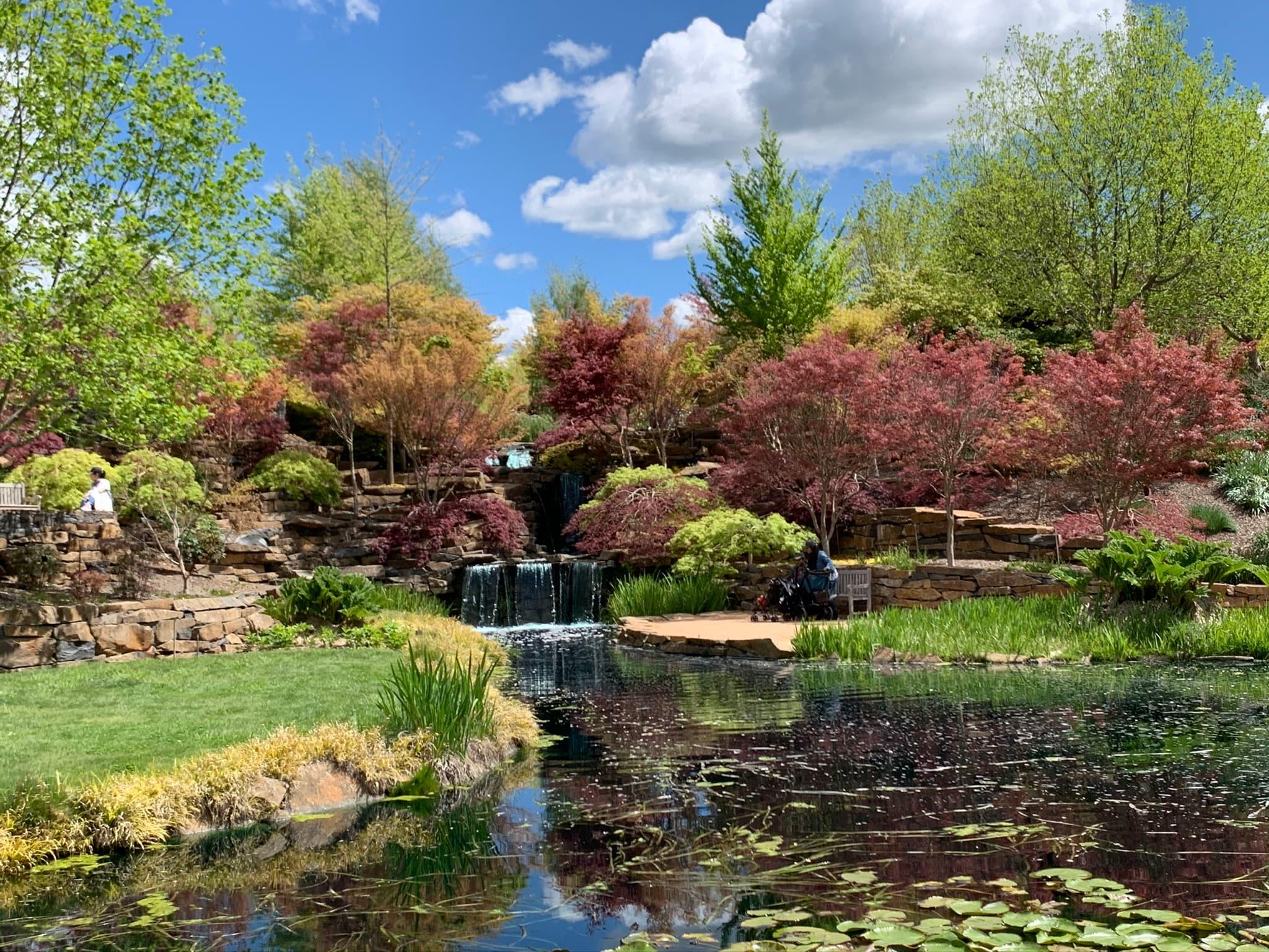 Autumn garden and pond near Oberon