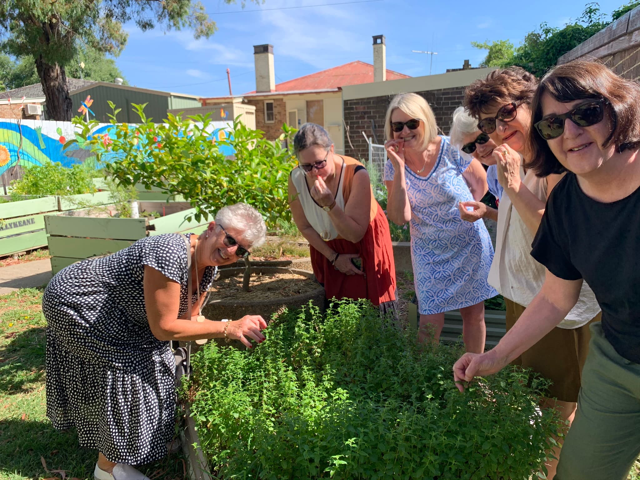 6 guests picking native plants